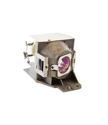 Acer MC.JMB11.001 310W UHP projector lamp